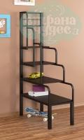 Лестница - стеллаж металлическая ФМ